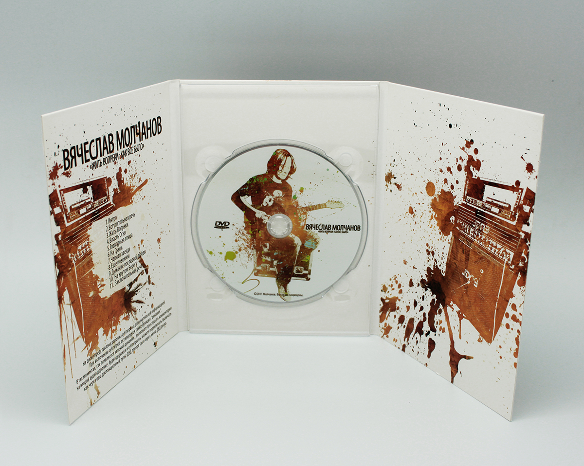 Digipack DVD 6 полос 1 трей