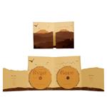 Пример картонной упаковки для DVD 13