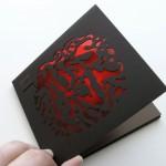 Пример дизайна упаковки 4